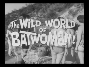 The wild world of batwoman programme drive in movie channel